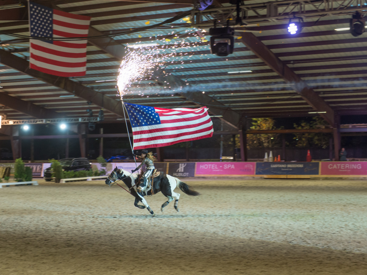 News, Shelby, Haras Cup, Nov. 2015, horse