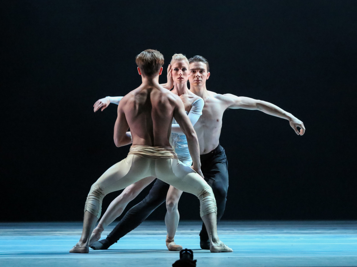 Artists of Houston Ballet Ballet in Reveal