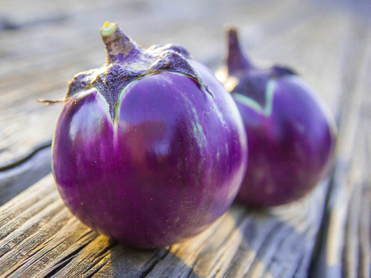 Photo of two eggplants