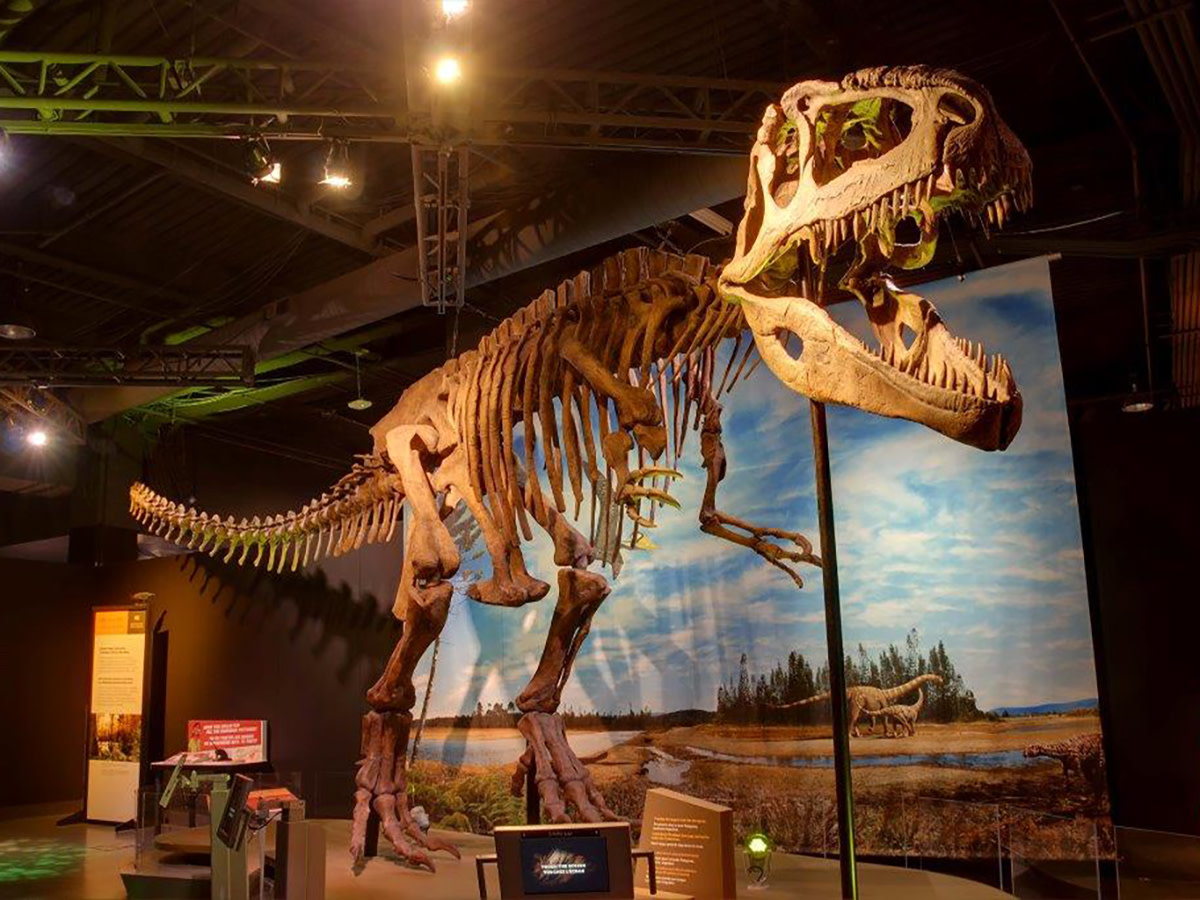 Perot Museum presents Ultimate Dinosaurs