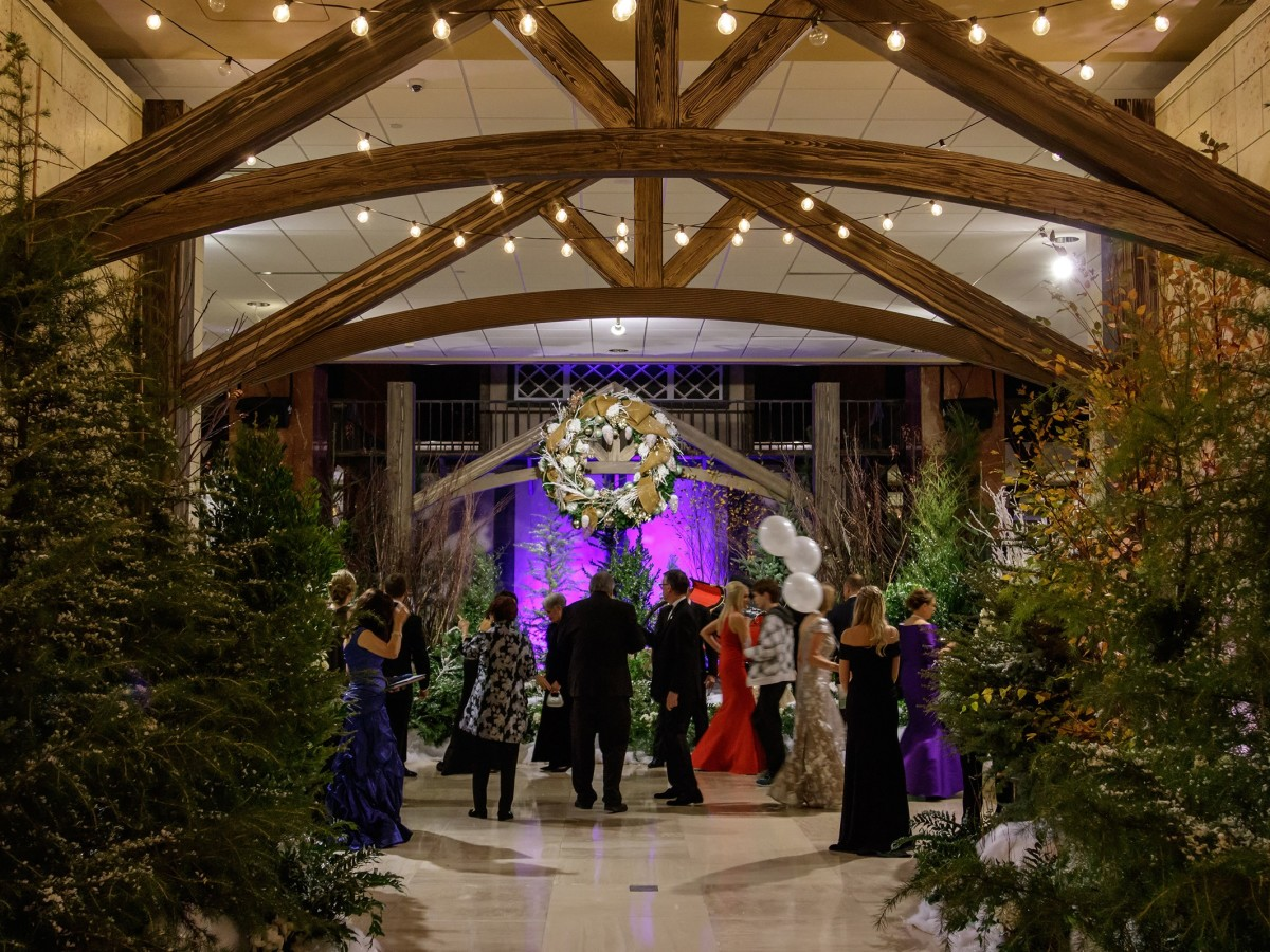 Crystal Charity Ball 2017 entrance