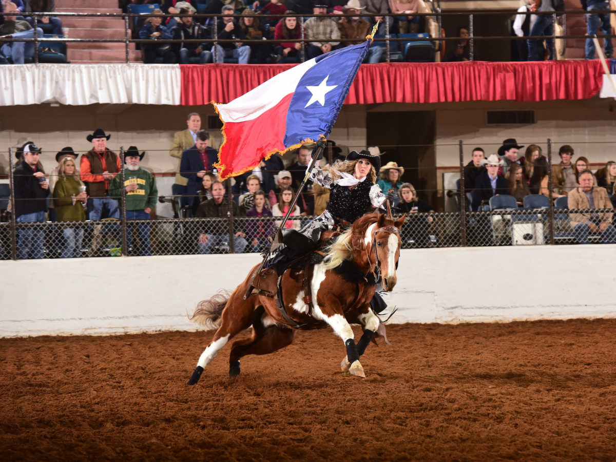 Fort Worth Stock Show