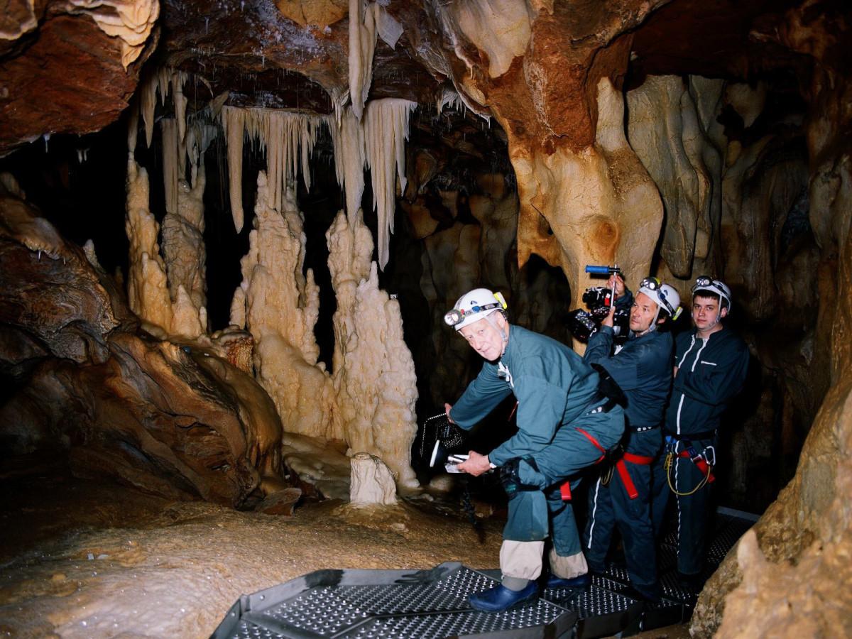 News_Cave of Forgotten Dreams_cave