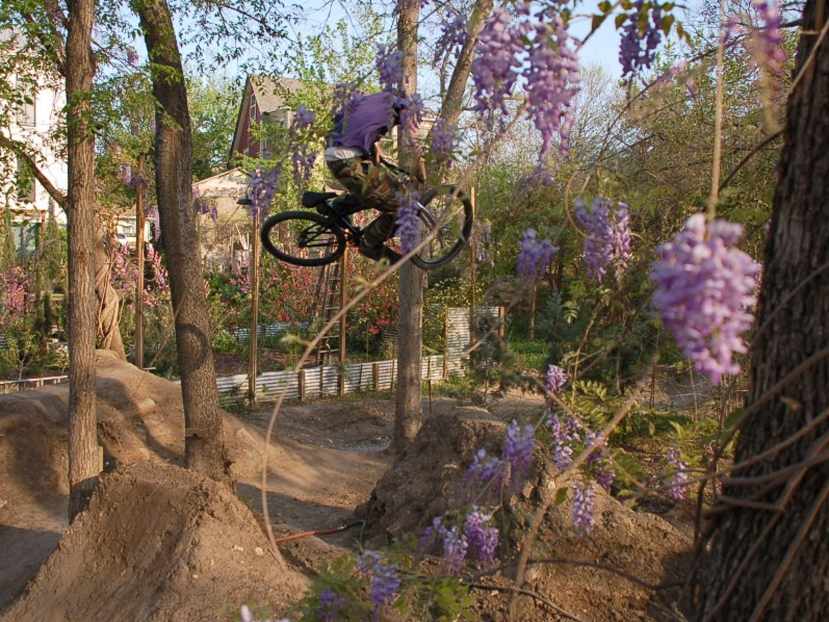 Austin Photo Set: Places_unique_austin_9th_street_dirt_jumps_flowers