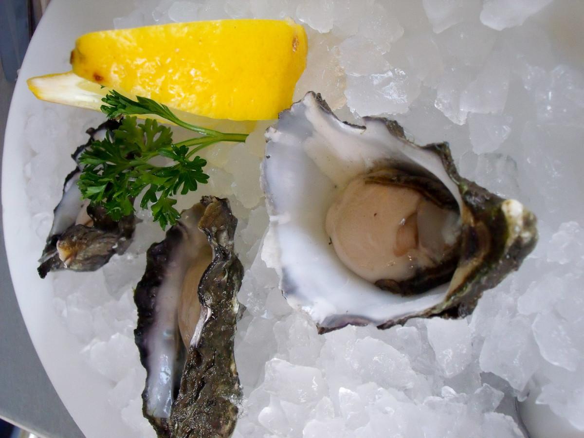 News_Marene Gustin_oysters_half-shell_lemon