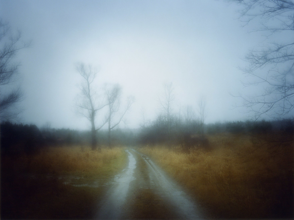 News_FotoFest 2010_Whatever Was Splendid_Todd Hido_8614_from series_A Road Divided_2009