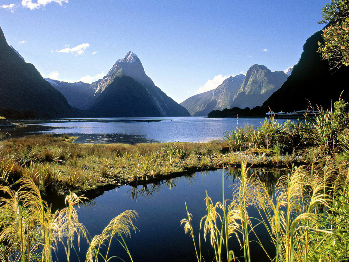 News_New Zealand_Milford Sound_Fjordland