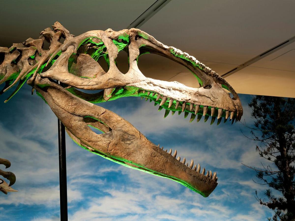 Perot Museum dinosaur