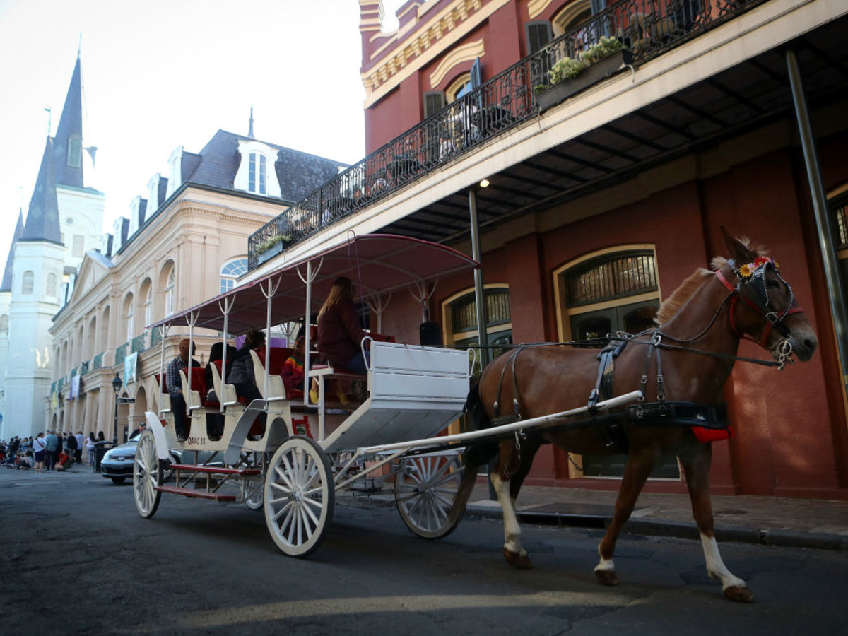 French Quarter horse carriage