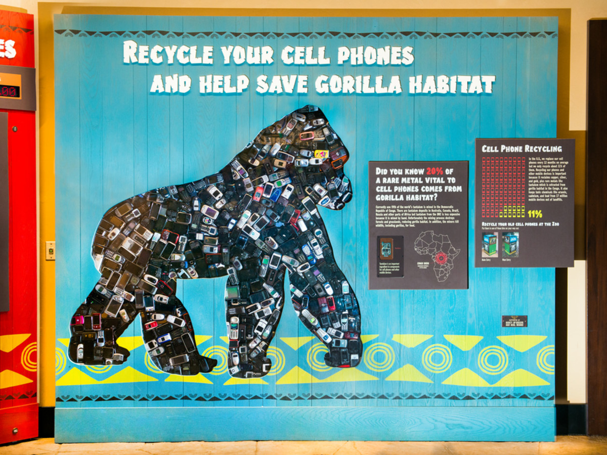 Gorillas and cell phones exhibit