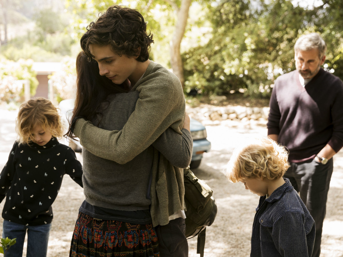 Maura Tierney, Timothee Chalamet, and Steve Carell in Beautiful Boy
