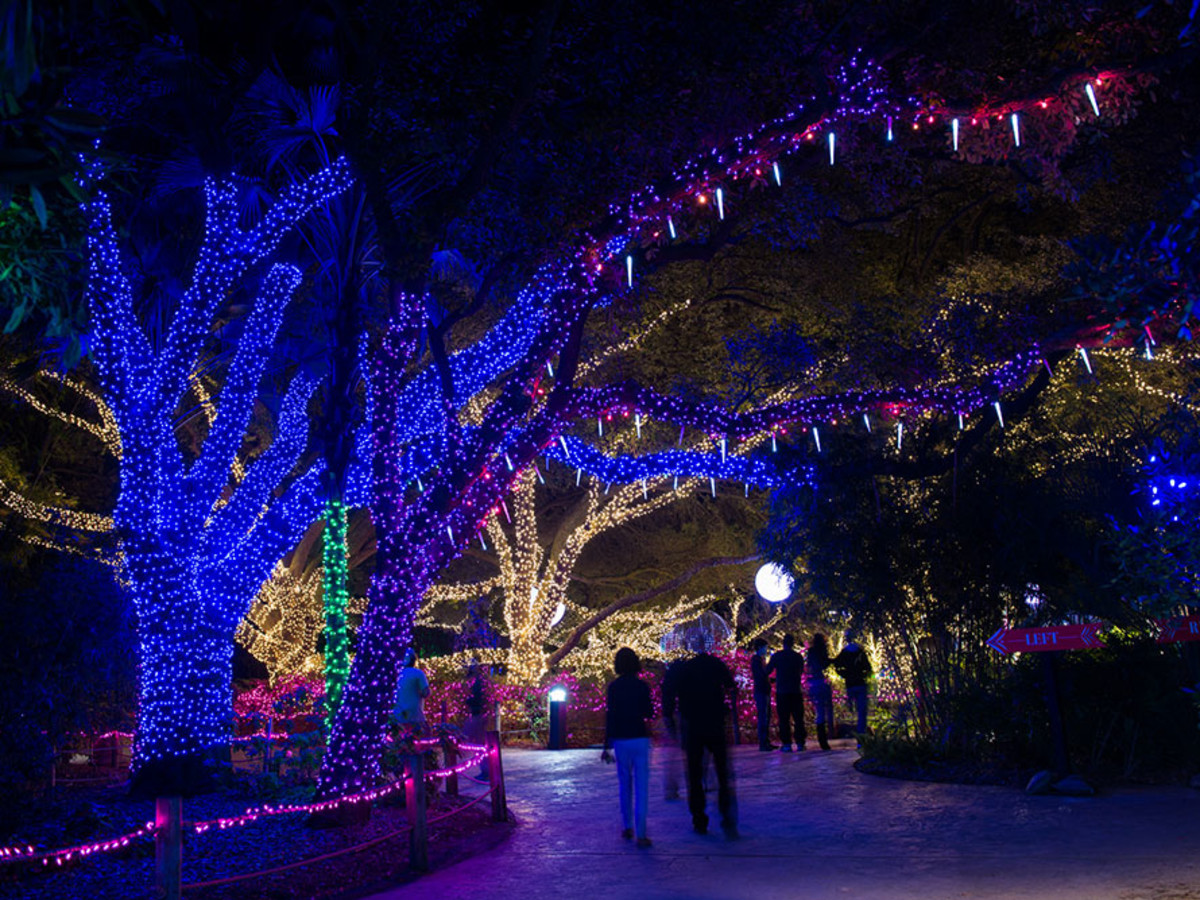 Zoo Lights Houston Zoo 2014