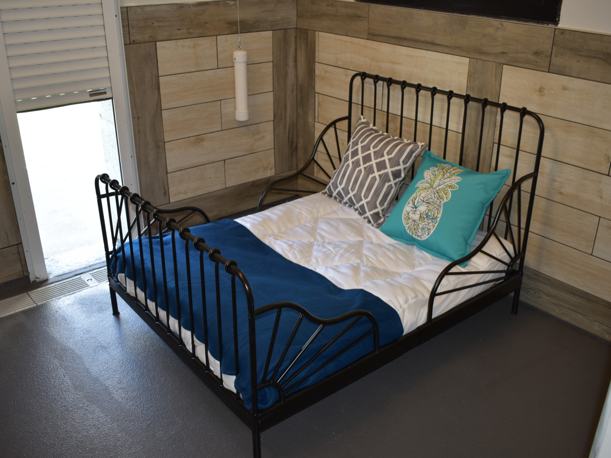 pet paradise georgetown bed