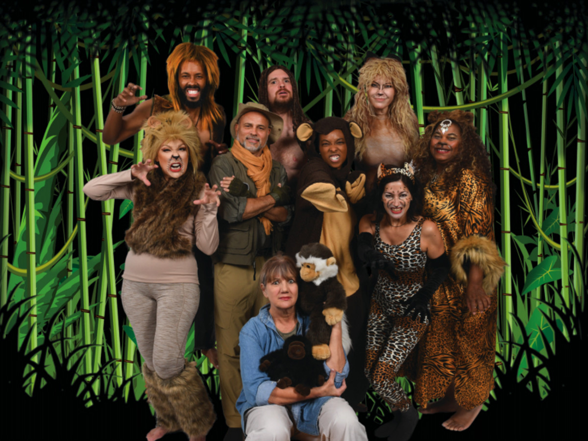 Night Court Jungle Book II Houston