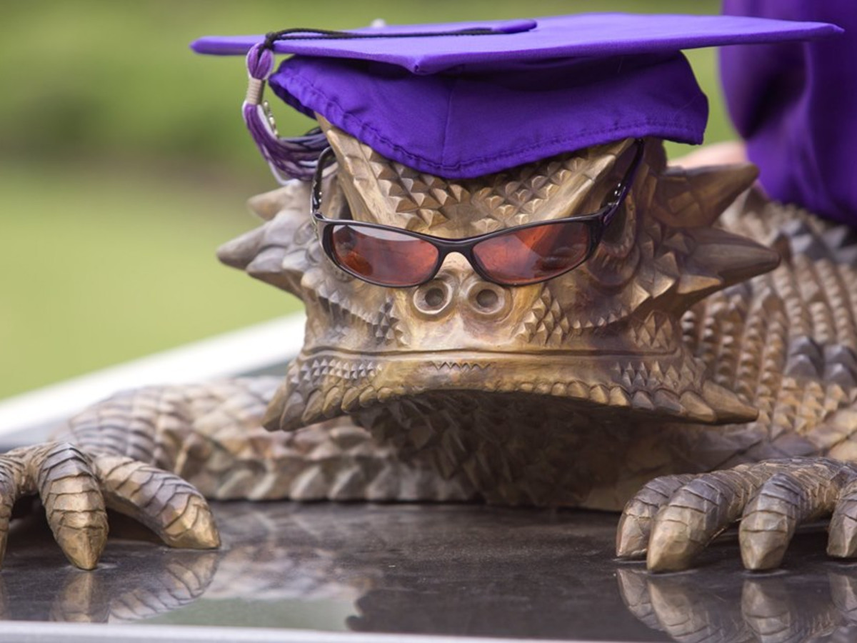 TCU Horned Frog