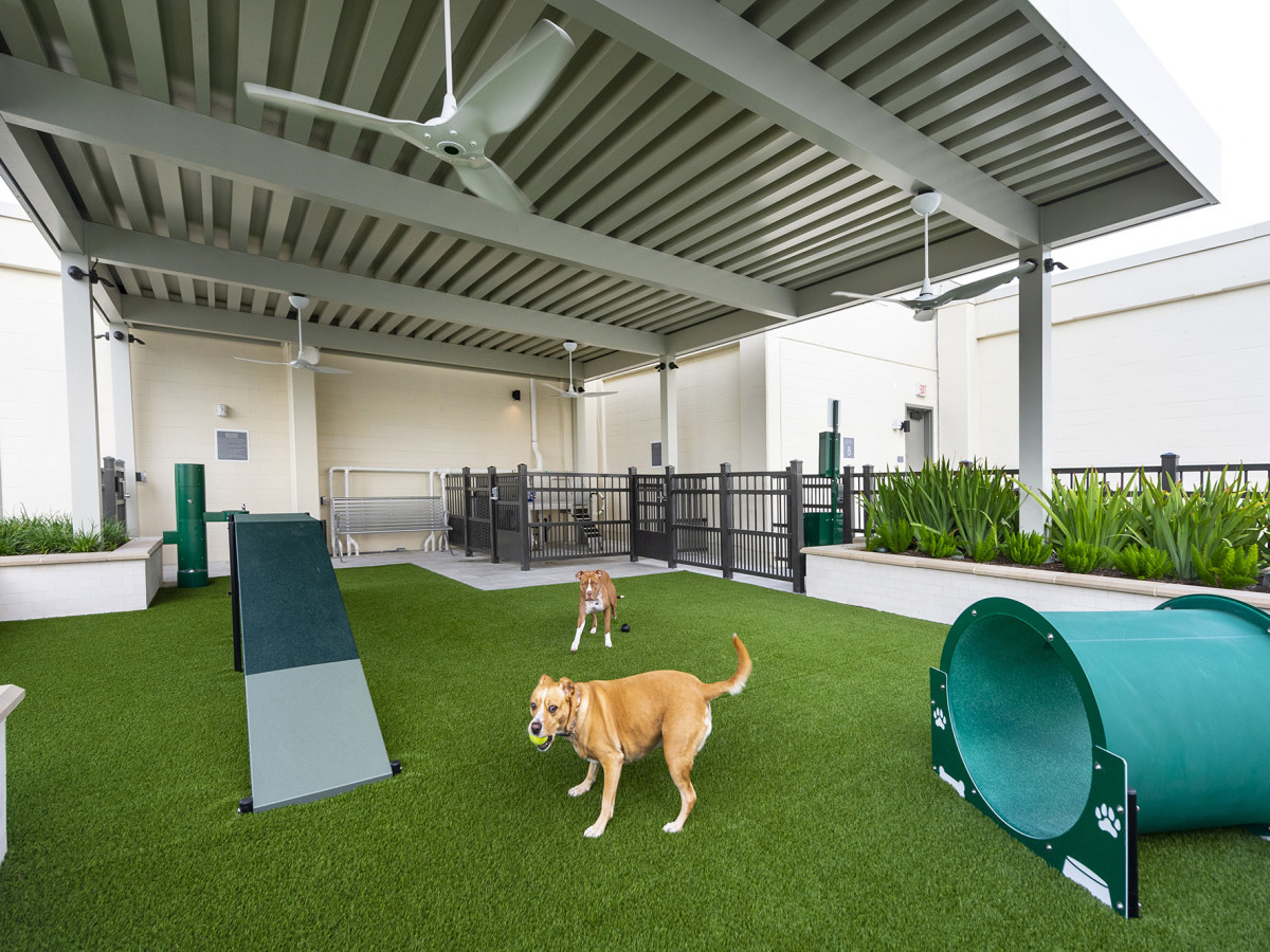 The McAdams Memorial City pet park