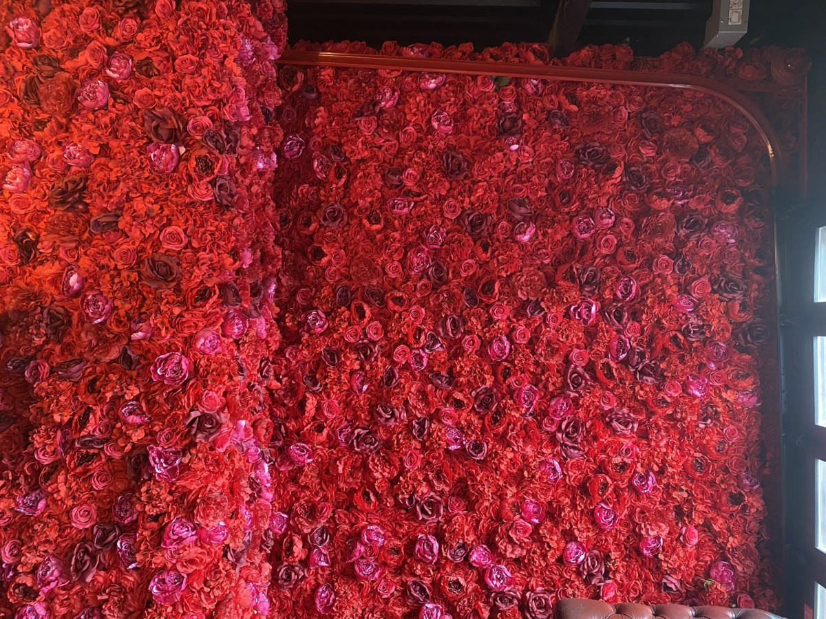 Dahila flower wall