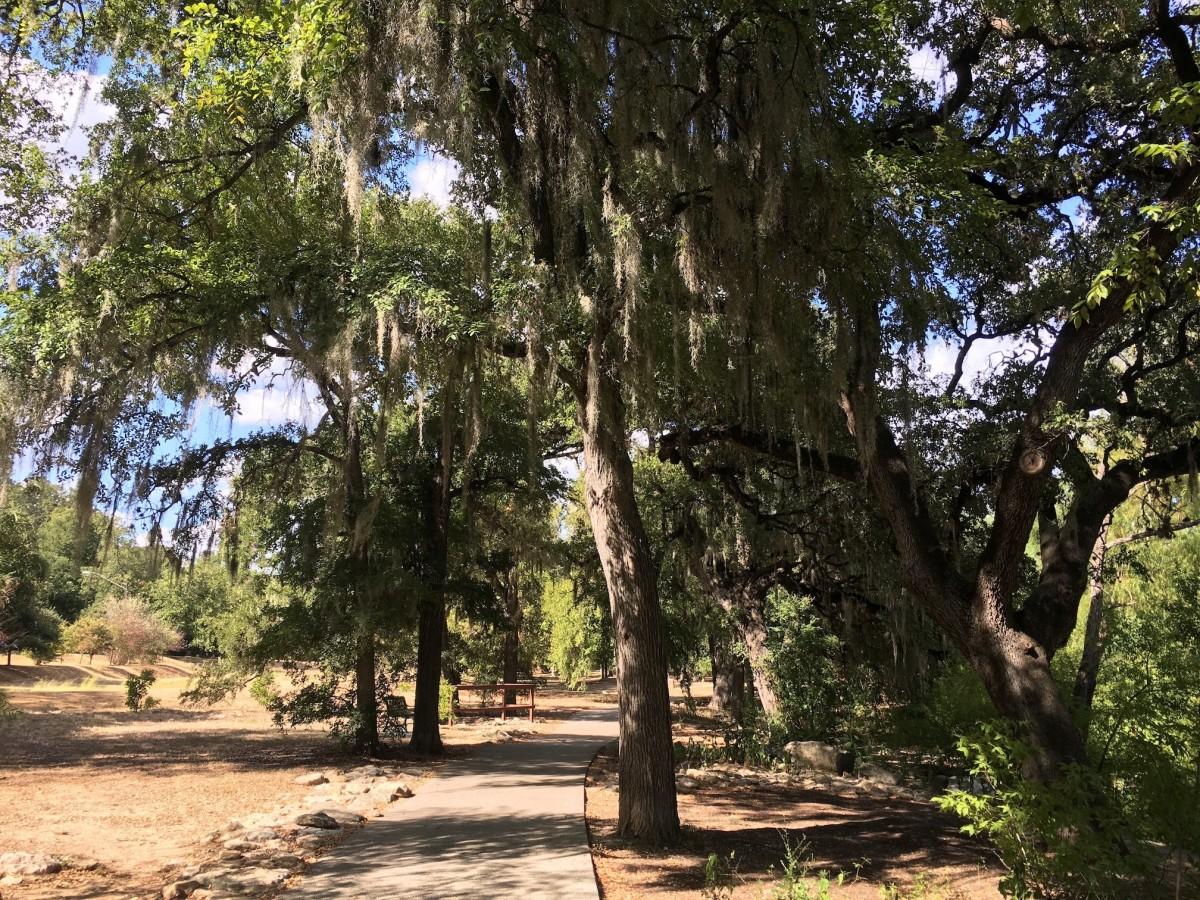 Shoal Creek Trail hike an dbike