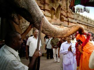 Bechdel Films presents Guruklam