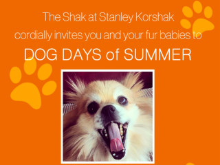 Stanley Korshak Dog Days of Summer