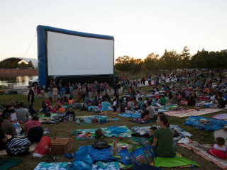 Mueller Austin presents Movies at Lake Park