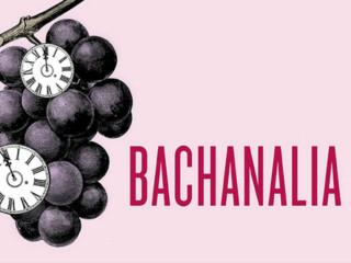 Ars Lyrica Houston presents Bachanalia: Cantatas for the New Year