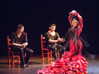 Compañia Flamenca José Porcel