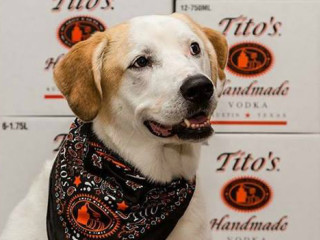 Tito's Vodka brand Vodka for Dog People 2015