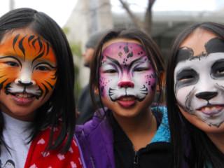 Adventure Asia: Lions & Tigers & Panda Bears, Oh My