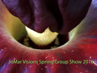 JoMar Visions Spring Group Show 2016