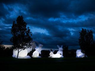 Arts Brookfield presents Amanda Parer: Intrude