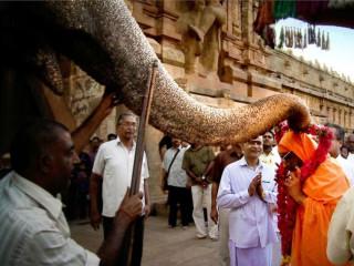 14 Pews presents Gurukulam