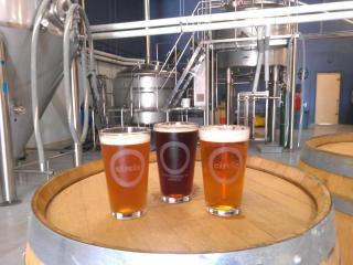 draft beers at Circle Brewing Company