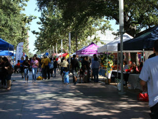Volunteer Houston 2nd Annual Volunteer Fair and Festival