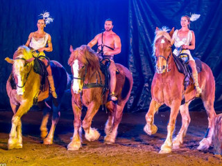 horses and performers of Gladius