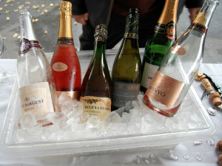 Champagne - Vino Vino Oodles of Bubbles Fest 2014