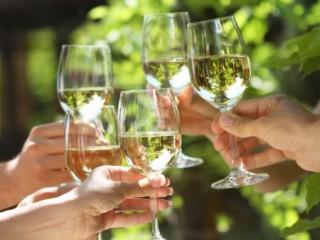 Kemah Boardwalk's International Wine Fest