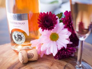 Andiamo Ristorante-Italiano_wine dinner_Santhomas_2015