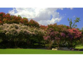 Dallas Arboretum presents Summer at the Arboretum