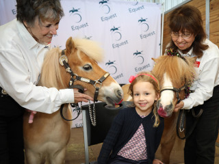 Equest presents Equine Story Time