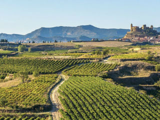 Spain & Portugal Wine Dinner