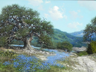 Southwest Gallery presents The Beauty of the American Landscape