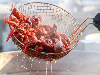 Frisco's Claws for Paws Crawfish Festival 2018