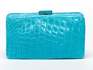 Places-Shopping-Alexandra Knight clutch
