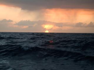News_Joel Luks_green_sunset