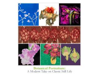 Botanical Portraiture: A Modern Take On Classic Still Life