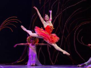 Ballet Austin presents The Firebird/Dvořák Serenade