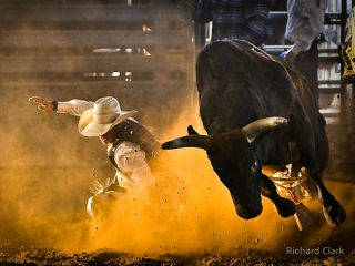Saturday Night Rodeo