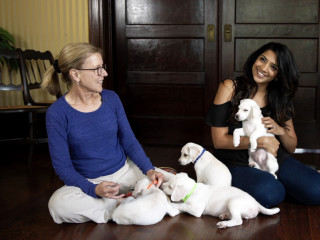 Arushi Garg and puppies