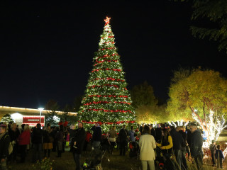 Allen Parks and Recreation Department presents Holly Jolly Celebration
